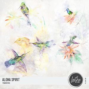 Aloha Spirit - Transfers