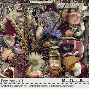 Fading - Kit