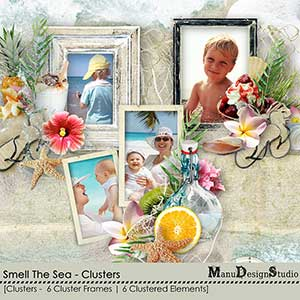 Smell The Sea - Clusters