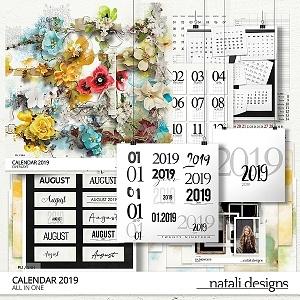 2020 Calendar All in One