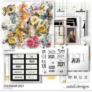 2021 Calendar All in One