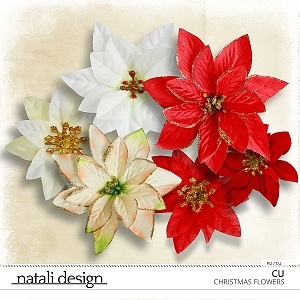 CU Christmas Flowers