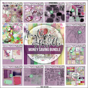 Anything is Possible {Bundle}
