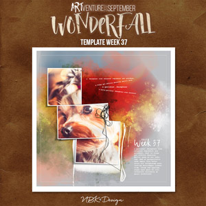 WonderFall {Template 37}