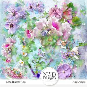 Love Blooms Here Floral Overlays