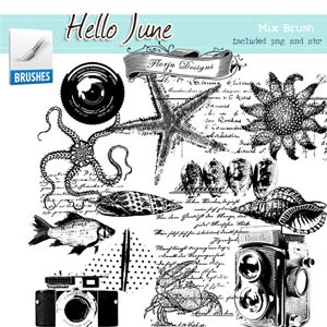 Hello June { Mix Brush PU } by Florju Designs
