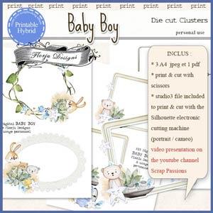 Baby Boy Printable Clusters by Florju Designs PU