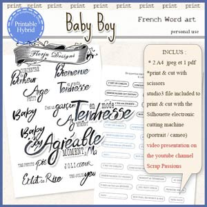 Baby Boy Printable French Word art by Florju Designs PU