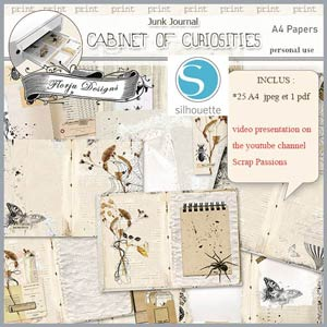 Cabinet of curiosities Papers A4 by Florju Designs