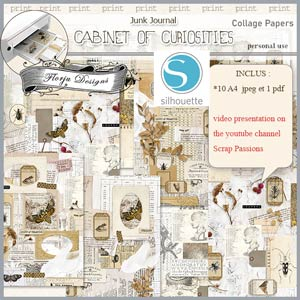 Cabinet of curiosities Collage Papers A4 by Florju Designs