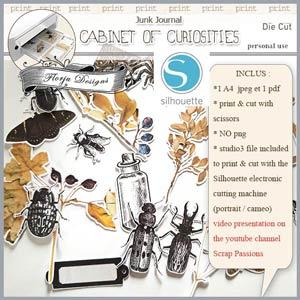 Cabinet of curiosities Die cut by Florju Designs