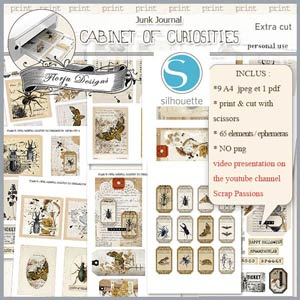 Cabinet of curiosities Ephemeras by Florju Designs