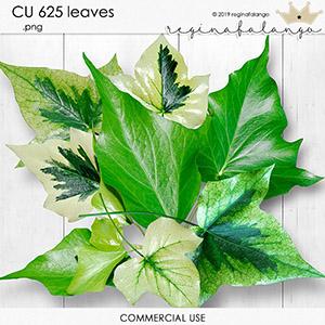 CU 625 LEAVES