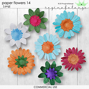 PAPERS FLOWERS 14