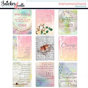 Metamorphosis Pocket Cards