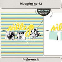 taylored blueprint NO. 12