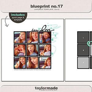 taylored blueprint NO17