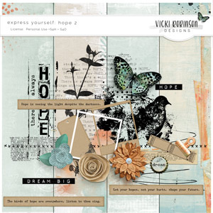Express Yourself: Hope 2 by Vicki Robinson