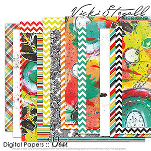 Desi Papers by Vicki Stegall