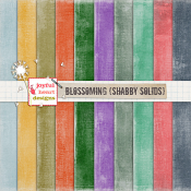 Blossoming (shabby solids)
