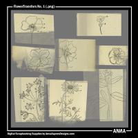 FlowerTransfers No. 1