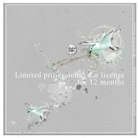 Dido Designs license 12 months