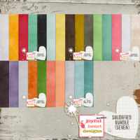 Solidified Bundle (seven)
